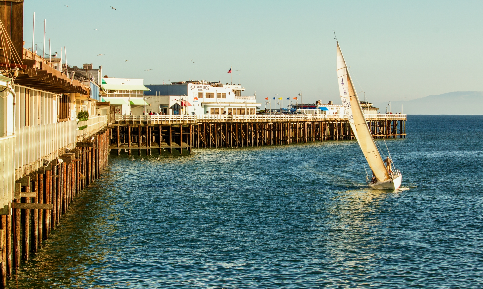 Vacation rentals in Santa Cruz