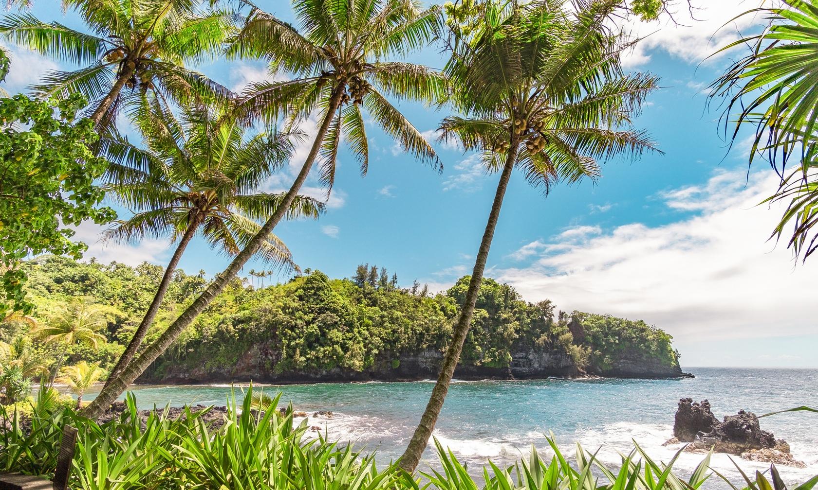 Vacation rentals in Hilo