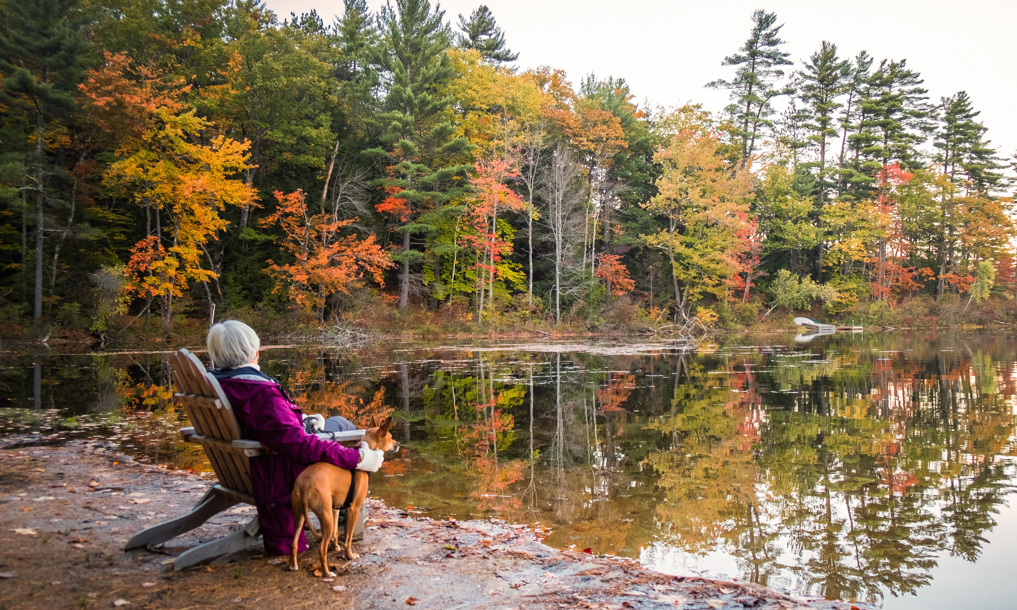 New Hampshire Vacation Rentals & Homes   United States   Airbnb