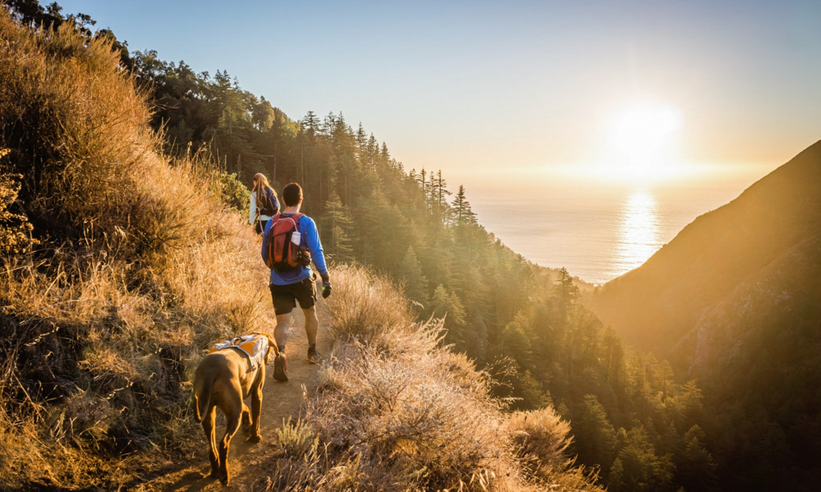 Cabin and lodging rentals in Big Sur