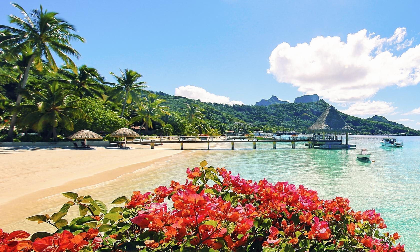 Holiday rentals in Bora-Bora