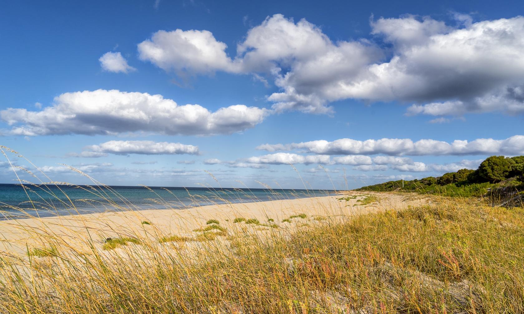 Vacation rentals in Eagle Bay