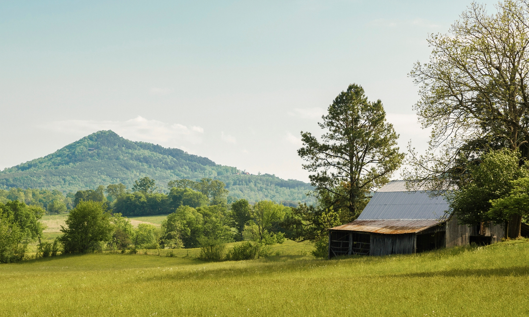 Cabin and house vacation rentals in Tellico Plains