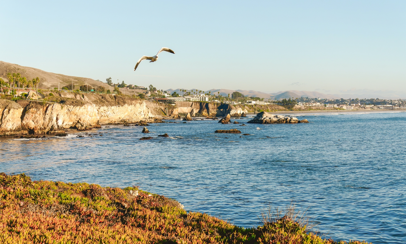 Vacation rental houses in Pismo Beach