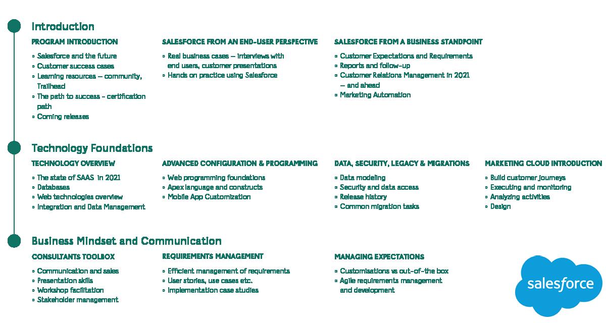 Salesforce program details