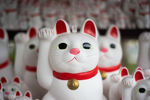Lucky cat, promesse de pospérité