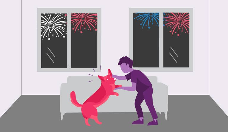 An illustration of a dog and its owner playing in front of a couch while fireworks are going off in the background for the Fourth of July