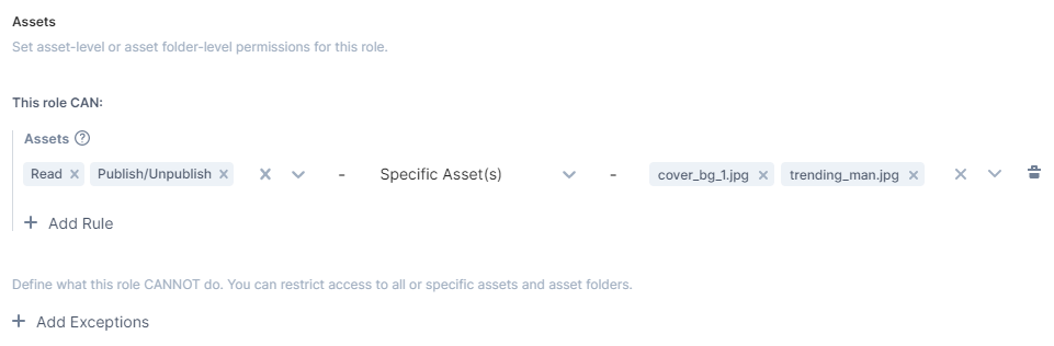 create_a_role_Permissions_on_assets_specific_assets_no_highlight.png