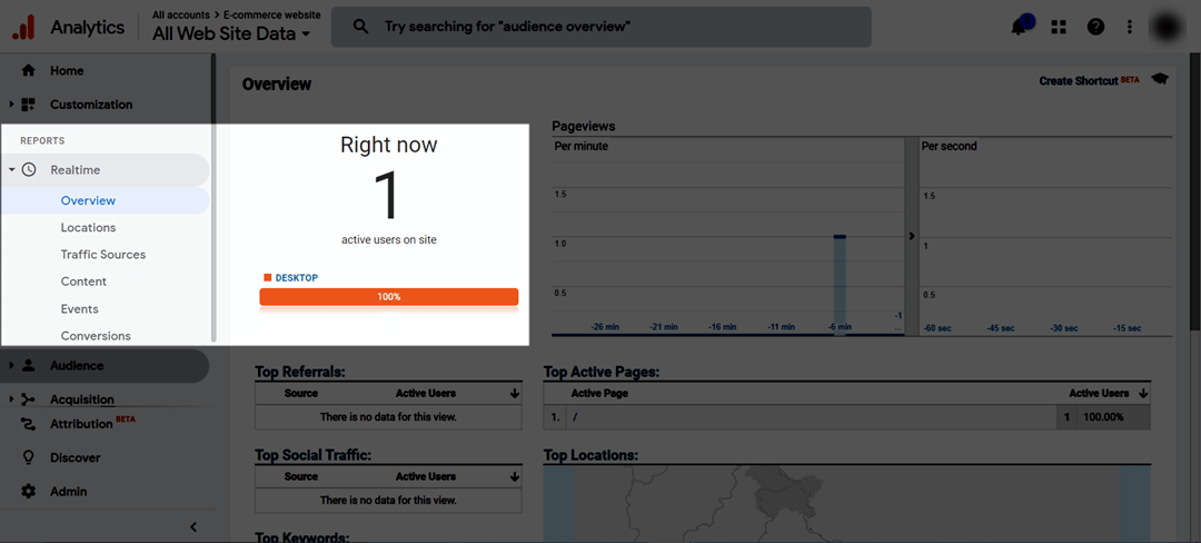 view-realtime-users.png