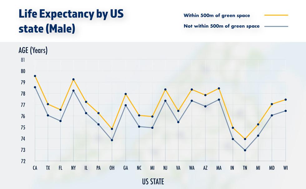 980Male-life-expectancy-chart.jpg