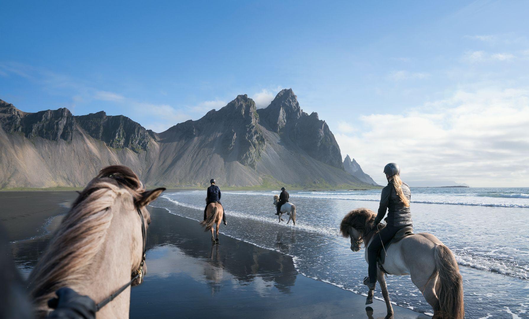 four Icelandic horses trotting towards Vestrahorn mountain