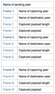 weave-frame-encapsulation-178x300.png