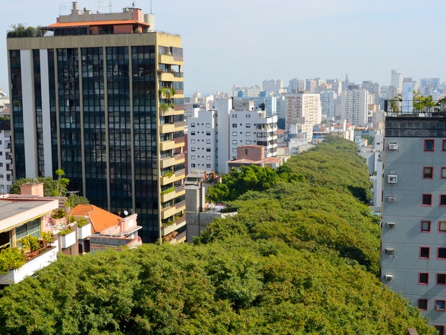 Porto_Alegre_iStock-521386696.jpg