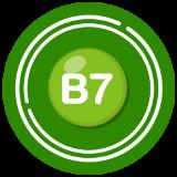 วิตามินบี 7 (ไบโอติน)