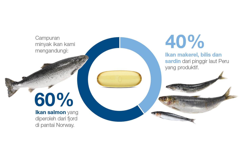 Kami Menghasilkan Salmon Omega 3 Paling Tulen Nutrilite Malaysia Minyak Ikan Natural Vitamin E Ocean King Kemampanan