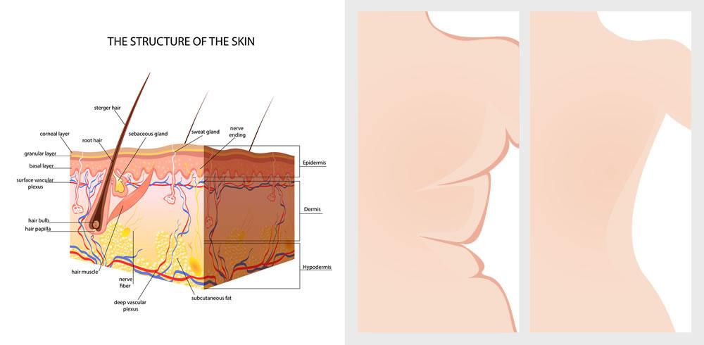 diet-skin-2.jpg