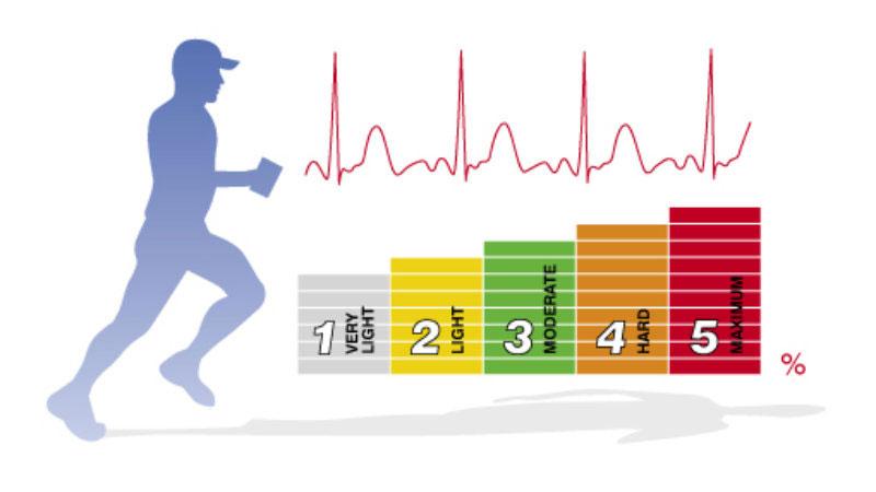 heart-rate-1.jpg