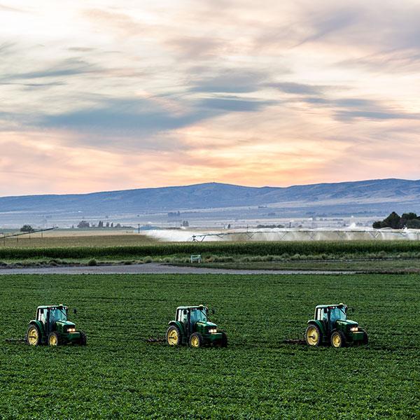 Ladang Kami yang Membezakan Kami