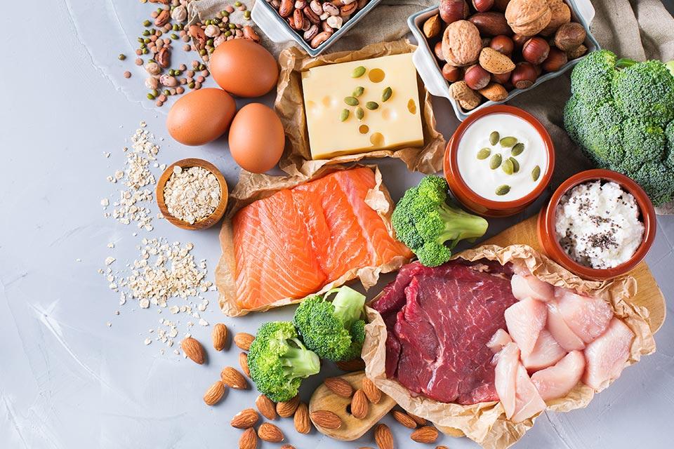 蛋白质是什么?