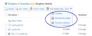 DropBox_141-300x117.png