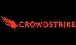 crowd-strike.png