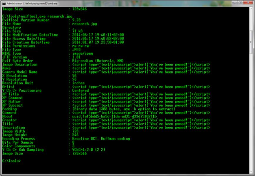 XXS-vulns-doc-metadata_img4.png