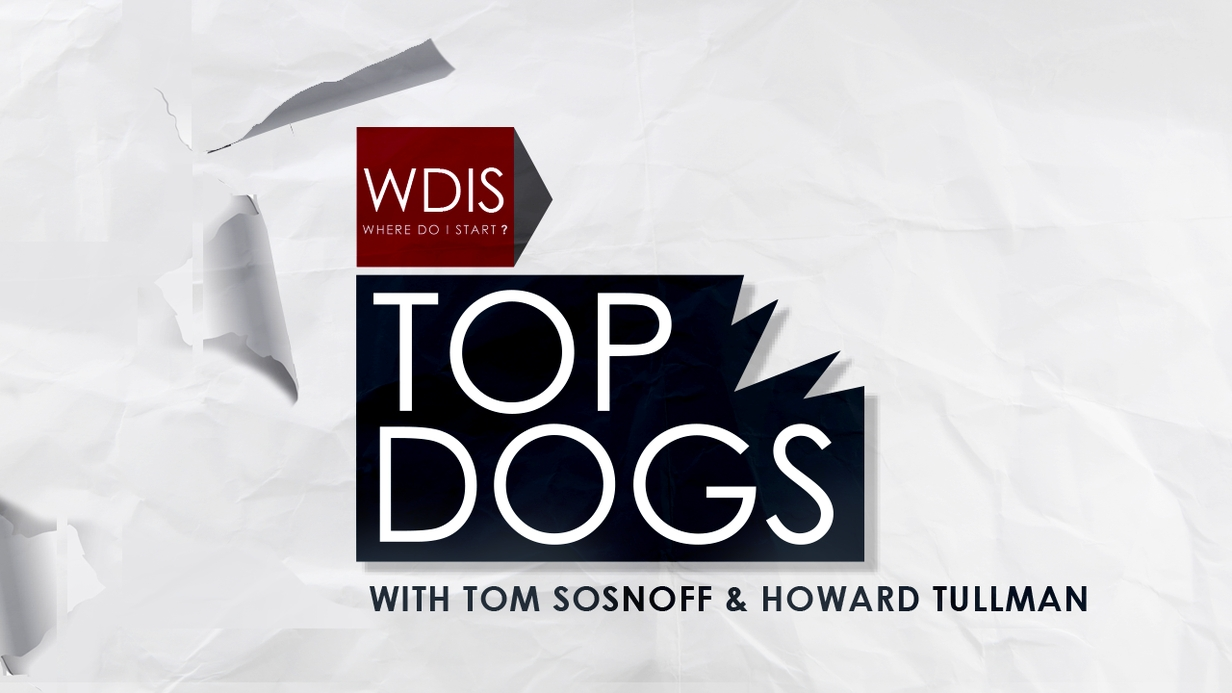 WDIS: Top Dogs hero image