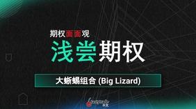 Big Lizards 大蜥蜴组合
