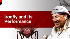 Ironfly and Its Performance