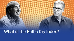 What is the Baltic Dry Index?