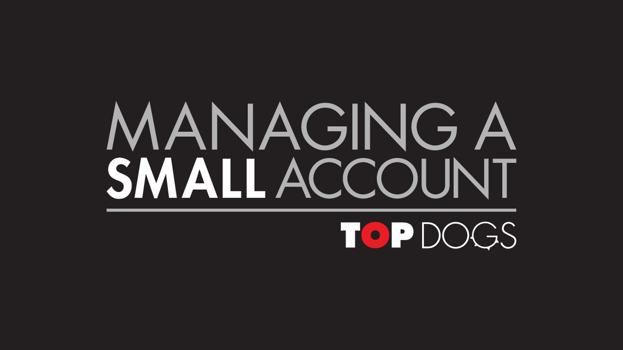 Top Dogs: Managing a Small Account hero image