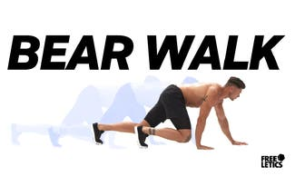 FL_1_Blog-Header-Pics_1232-x-630-bear-walk.png