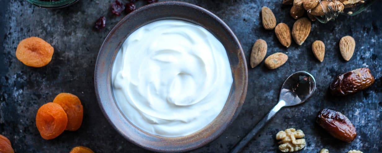 Greek Yogurt 1 header copy