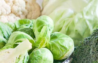 Header winterNUT food vegetables