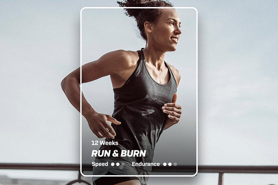 EN FL NL TJ-graphic-cards RunBurn