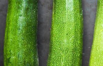 Header Zucchini