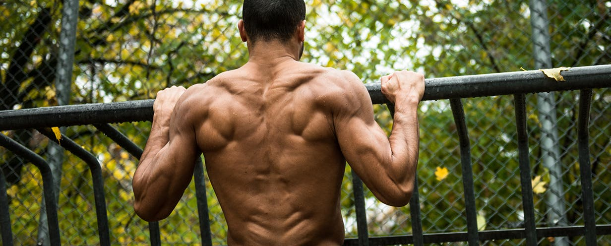 gewicht halten muskeln aufbauen