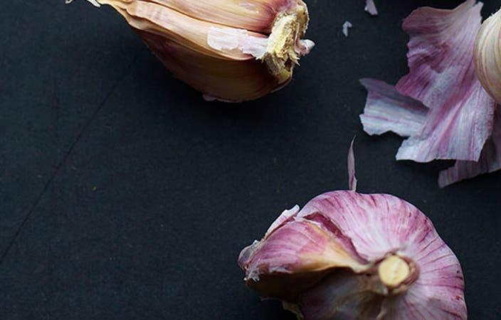 Header GarlicTips