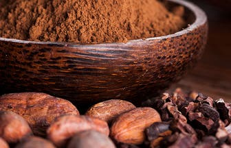 Header Cacao