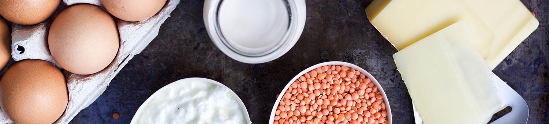 enzymes qui décomposent les graisses et les protéines