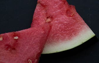 Header Watermelon