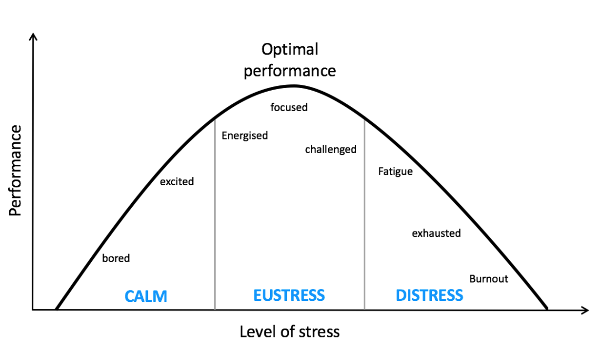 What is stress and what types of stress exist?