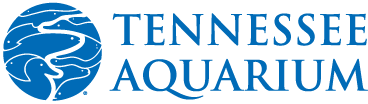 Tennessee Aquarium InsideOut Land Sponsorship Agreement_signed by Aquarium.png
