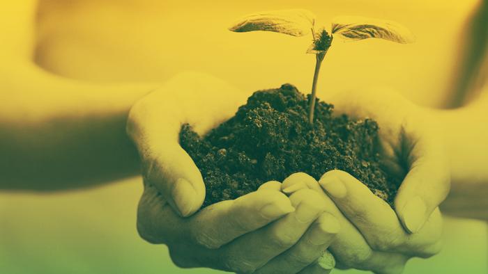 Investimento Sustentável: O Que Você Deve Saber Antes de Apresentar a Seus Clientes