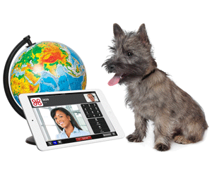 Business VoIP globe and dog