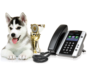 Business VoIP keeps Pet Expo connected
