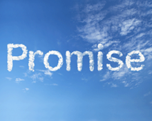 hosted-voip-promise-220x175.png
