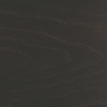 Interior Charcoal Swatch