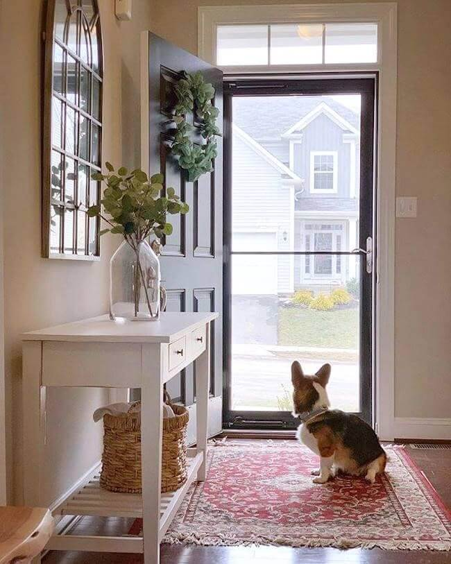 storm door benefits interior view dog looking outside full glass storm door