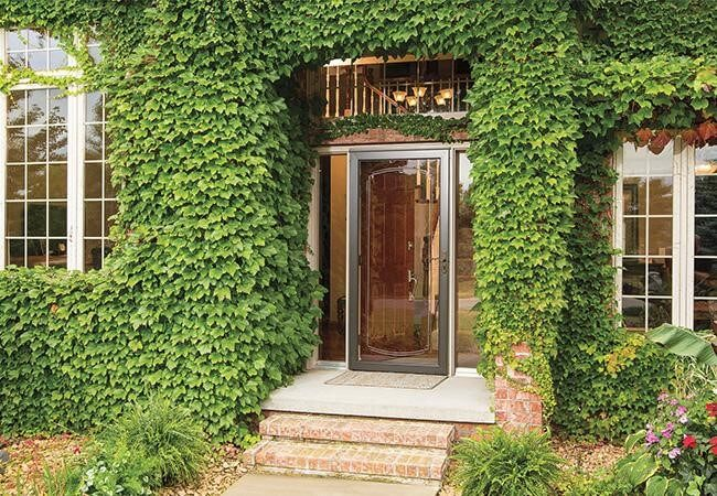 storm door benefits brown framed storm door ivy covered home